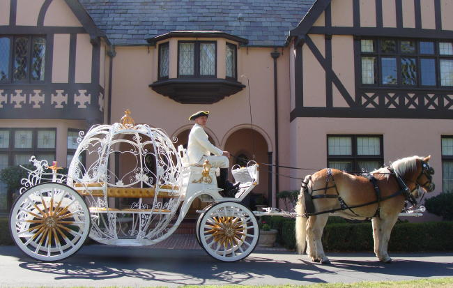 Cinderella Coach - image from Fancy Ferriage